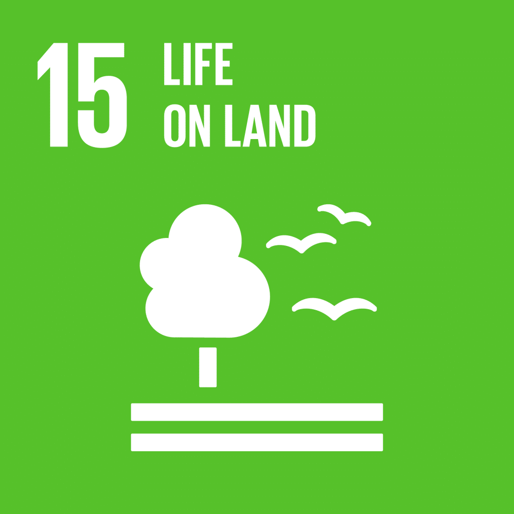 TheGlobalGoals_Icons_Color_Goal_15