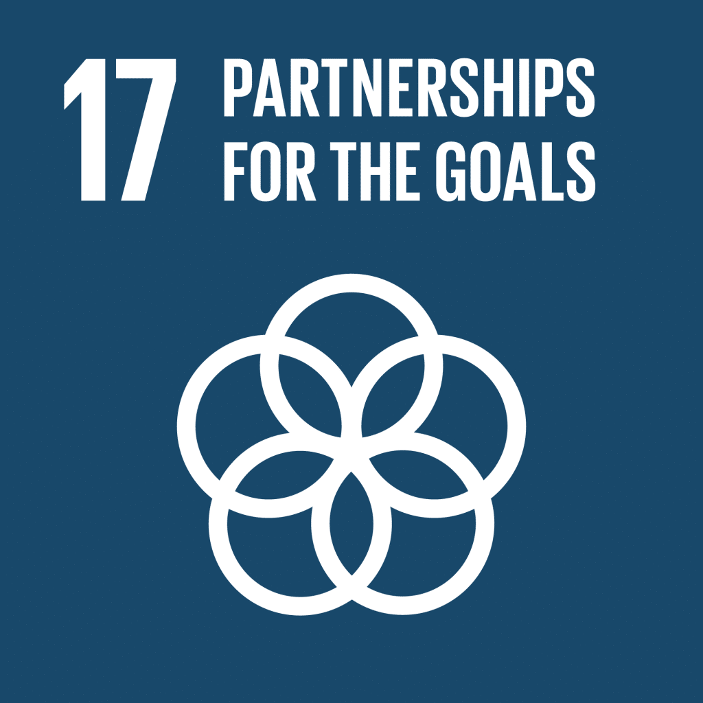 TheGlobalGoals_Icons_Color_Goal_17